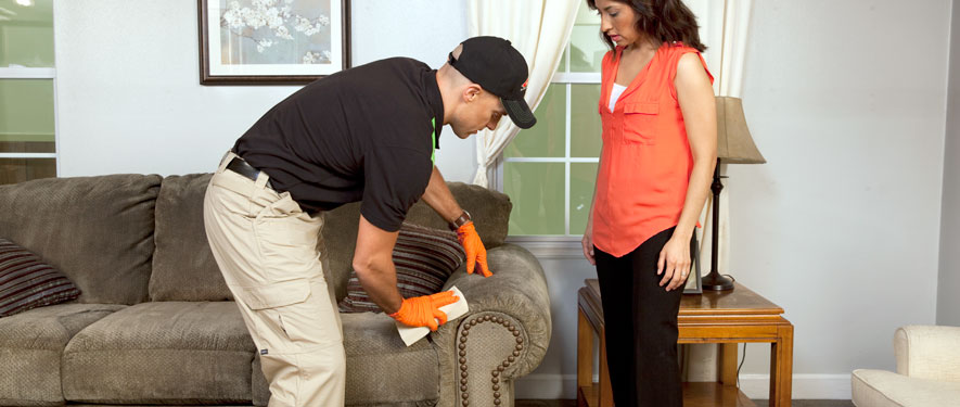 Milford, PA carpet upholstery cleaning